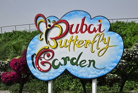 DUBAI FAIRYLAND SIGHTS