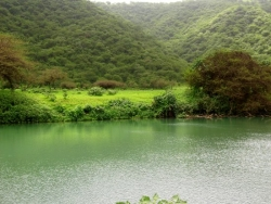 green garden of Salalah