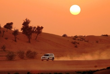 Morning Desert Safari Dubai Tour for Individuals and Families